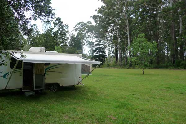 Coopernook Australia  city photos : Coopernook Forest Park | FREE CAMPING AUSTRALIA