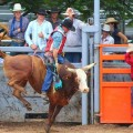 Mareeba Rodeo – Annually in July