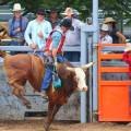 Mareeba Rodeo – Annually in July