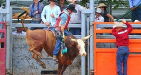 Mareeba Rodeo - Annually in July