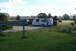 Mother of Ducks Free Camp Guyra