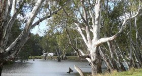 Ayson's Reserve Free Camping Area