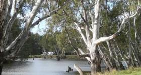 Ayson's Reserve