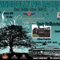 Nindigully Pig Races – Last Saturday in Nov each year