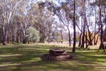 Scotts Beach Free Camping Area Cobram Victoria