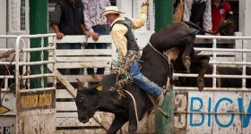 Warwick Rodeo - October each year