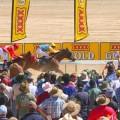 Birdsville Races – Aug/Sept each year