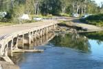 Calliope River Camping Area