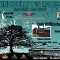 Nindigully Pig Races – Last Saturday in Nov each year